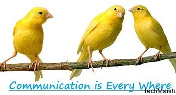 5 Communication Tools For Bloggers