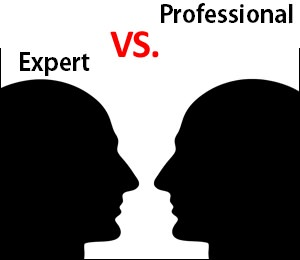 expert vs professional