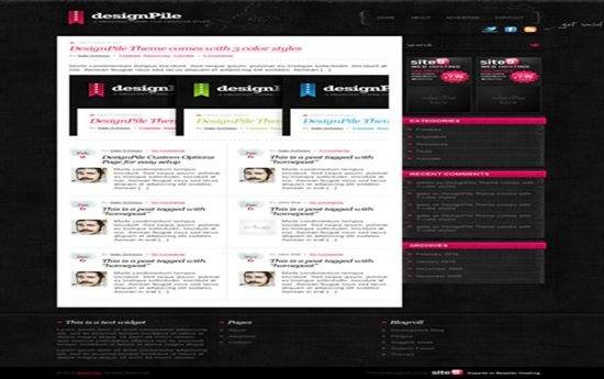 Designpile WP Theme