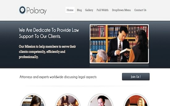 Poloray responsive WP Theme