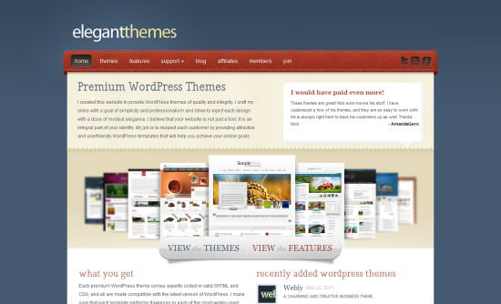 Elegant  10 WP Theme Resources that'll Make You Business Leader