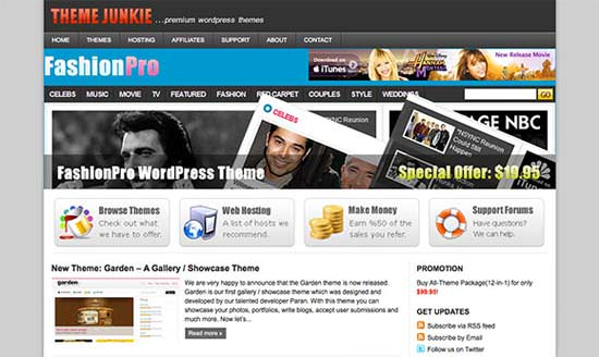 theme junkie 10 WP Theme Resources that'll Make You Business Leader