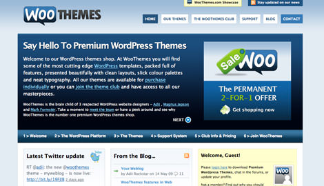woothemes 10 WP Theme Resources that'll Make You Business Leader